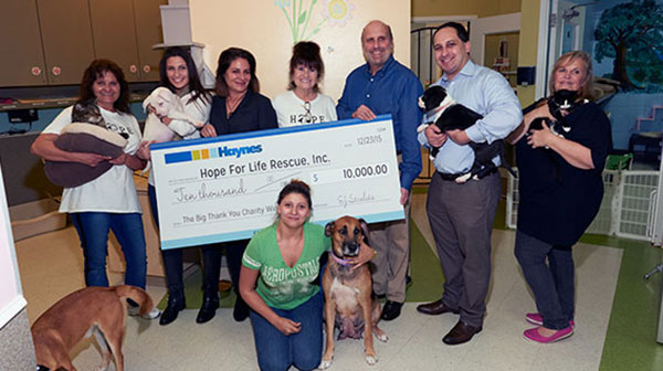 Haynes Donation - Hope for Life Rescue