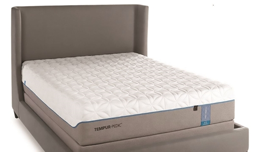 Temper Pedic Cloud Elite Queen Mattress Haynes