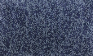 Picture of Karastan Pacifica Collection Kingston Indigo 5x8 Rug