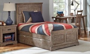 Picture for category Storage Beds