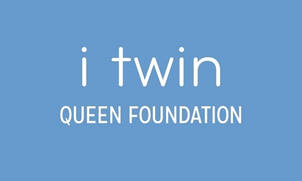 "iTwin Foam 9"" Standard Queen Foundation"