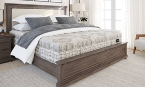 """Aireloom Kelsey Side-Stitched Plush 15"""" Queen Mattress"""