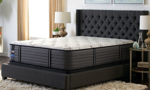 """Picture of Sealy Turkanna Cushion Firm 14"""" Queen Mattress"""