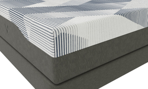 "VERITAS VF1400 Plush Gel Memory Foam 10"" Mattresses"