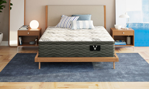 "VERITAS VH100 Plush Hybrid 11"" Mattress"