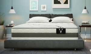 "VERITAS VH3000 Plush Hybrid 13"" Mattresses"